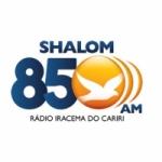 Logo da emissora Rádio Shalom 850 AM