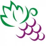Logo da emissora Web Rádio Vinha Vale