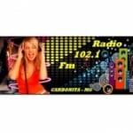 Logo da emissora Rádio 102 FM