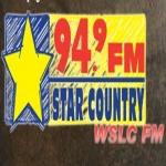 Logo da emissora WSLC 94.9 FM