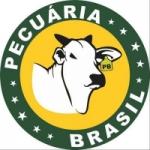 Logo da emissora Rádio Pecuária Brasil