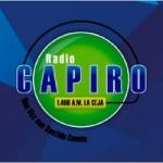 Logo da emissora Radio Capiro 1460 AM