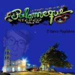 Logo da emissora Radio Palomeque Stereo 88.4 FM