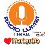 Logo da emissora Radio Lumbi 1300 AM