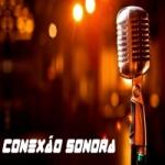 Logo da emissora Conexão Sonora