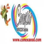 Logo da emissora Conex�o SD FM