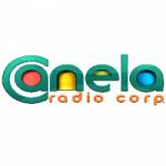 Logo da emissora Radio Canela 107.3 FM