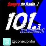 Logo da emissora Radio Conexion 101.3 FM