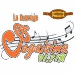 Logo da emissora Radio Pegaisima 91.7 FM
