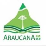Logo da emissora Radio Araucana 95.9 FM