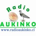 Logo da emissora Radio Aukinko