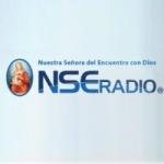Logo da emissora NSE Radio 106.3 FM