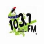 Logo da emissora Radio Uchumachi 103.7 FM