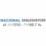 Logo da emissora Radio Nacional 1310 AM 98.7 FM