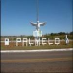 Logo da emissora Palmelo News