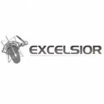 Logo da emissora Radio Excelsior 940 AM
