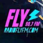 Logo da emissora Radio Fly  98.7 FM