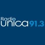 Logo da emissora Radio Unica 91.3 FM