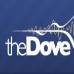 Logo da emissora Radio KDOV 91.7 FM