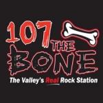 Logo da emissora WWYY 107.0 FM