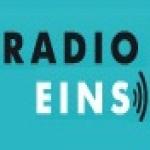 Logo da emissora Radio Eins 89.6 FM