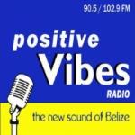 Logo da emissora Radio Positive Vibes 90.5 FM