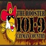Logo da emissora Radio The Rooster 101.9 FM