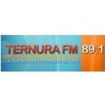 Logo da emissora Ternura 89.1 FM