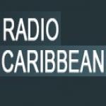 Logo da emissora RCI 101.1 FM