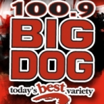 Logo da emissora Radio CKTO Big Dog 100.9 FM