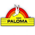 Logo da emissora Radio Paloma 97.5 FM