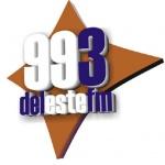 Logo da emissora Radio Del Este 99.3 FM