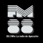 Logo da emissora Radio FM 88 89.3