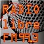 Logo da emissora Radio Libre 99.3 FM