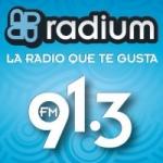 Logo da emissora Radium 91.3 FM