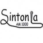 Logo da emissora Radio Sintonia 1000 AM