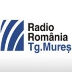 Logo da emissora Mures 102.9 FM