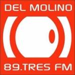 Logo da emissora Radio del Molino 89.3 FM