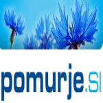 Logo da emissora Radio Murski Val 94.6 FM