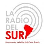 Logo da emissora Radio Del Sur 91.5 FM