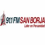 Logo da emissora Radio San Borja 91.1 FM