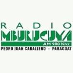 Logo da emissora Radio Mburucuyá 980 AM