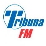 Logo da emissora Tribuna 99.1 FM