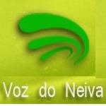 Logo da emissora R�dio Voz do Neiva 98.7 FM