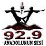 Logo da emissora Anadolunun Sesi 92.8 FM