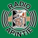 Logo da emissora Radio Apintie 97.1 FM