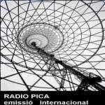 Logo da emissora Radio Pica 96.6 FM