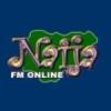 Radio Naija 101.1 FM