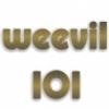 WVVL 101.1 FM