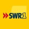 SWR1 BW 90.9 FM